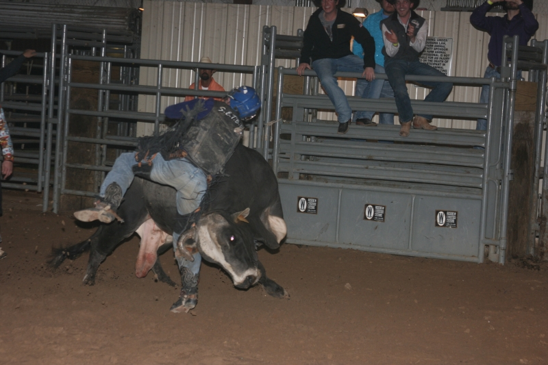 Dylan Scott & Bull Riding 074