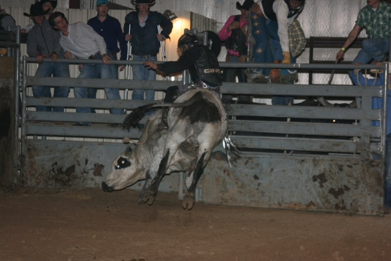 Dylan Scott & Bull Riding 078