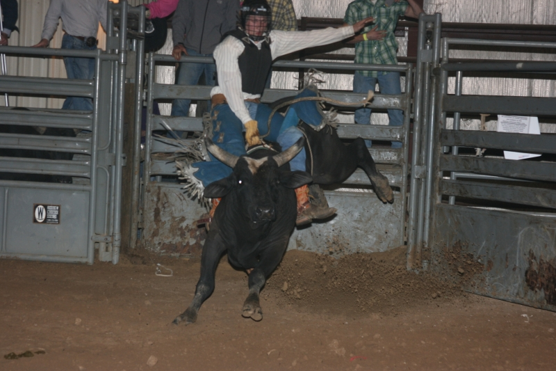 Dylan Scott & Bull Riding 080
