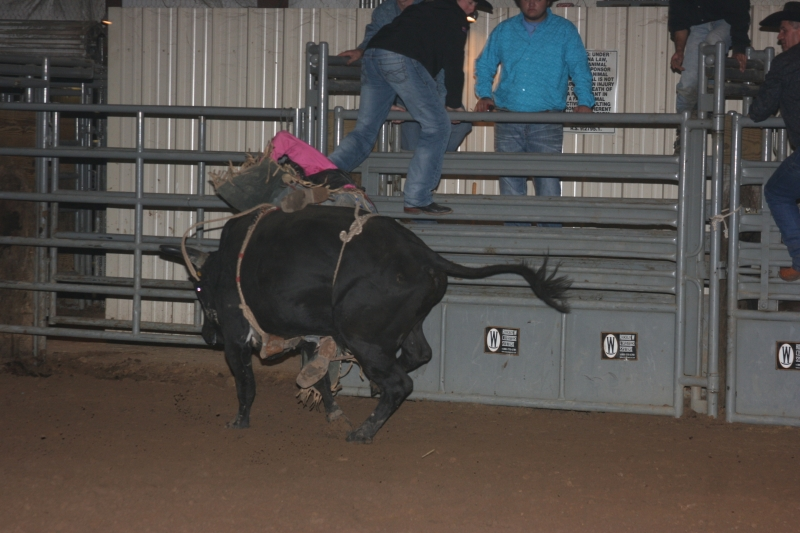 Dylan Scott & Bull Riding 086