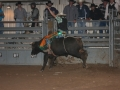 Dylan Scott & Bull Riding 057