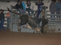 Dylan Scott & Bull Riding 072