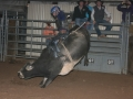 Dylan Scott & Bull Riding 073