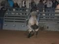 Dylan Scott & Bull Riding 077
