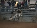 Dylan Scott & Bull Riding 078