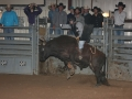 Dylan Scott & Bull Riding 087