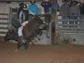 Dylan Scott & Bull Riding 088